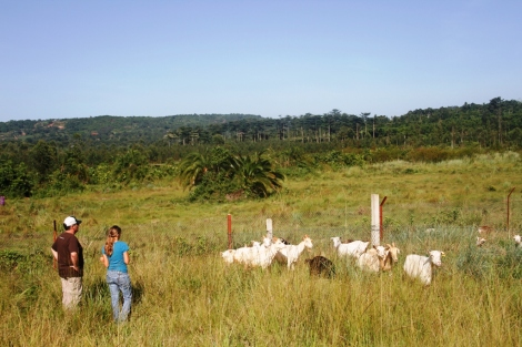 Steve (left) and Lianna discuss goat health and fencing during a stop at the Suubi goat farm.