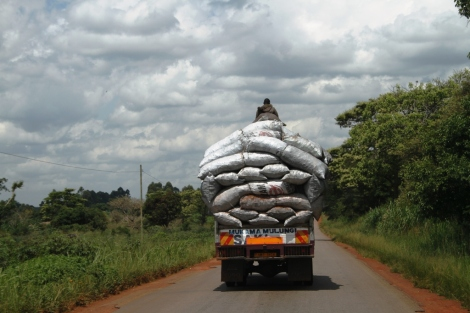 Driving back to Kampala, we run into a truck stacked high with coal, a primary fuel source for Ugandans. Do you see the man riding on the top?