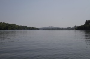 Here at the mouth, the Nile is blue-green and teeming with life.